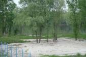 Аренда дома посуточно в Пуховке,на берегу десны! - территория