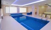 Аренда дома с бассейном посуточно Софиевская Борщаговка - бассейн выложенный мозаикой