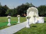 Аренда особняка посуточно для свадеб, село Чабаны! - дорожка для свадьбы