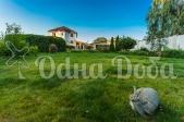 Аренда дома посуточно Белогородка,с бассейном! - газон