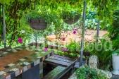 Аренда дома посуточно на Русановских садах! - подвесные цветы