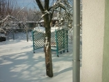 Аренда дома посуточно по улице Туполева - дерево