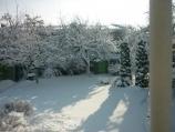 Аренда дома посуточно по улице Туполева - вид из окна